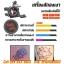 [SET B2] ชุดเครื่องสักคอยล์ Triple เครื่องสักลายครบชุด พร้อมอุปกรณ์สัก หมึกสัก สีสัก เข็มสัก (DragonHawk Pro-3 Tattoo Machine Set) thumbnail 4