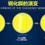 (พรีออเดอร์) ฟิล์มนิรภัย Huawei/Honor6 Plus-CJY thumbnail 4