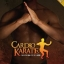 Cardio Karate [12 DVDs] thumbnail 1