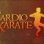Cardio Karate [12 DVDs] thumbnail 2