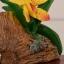 ของพรีเมี่ยม ที่เสียบปากกา กล้วยไม้เหลือง ขนาดกว้าง 12.5 ซม. สูง 10 ซม. thumbnail 4