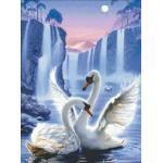 Swan love (พิมพ์ลาย)