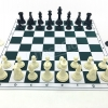 Deluxe Professional Chess Set