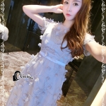 Cliona Made' Silver Grey 3D Embroidered Flowers Luxury Dress