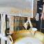เครื่องทำขนมฝอยทอง เครื่องหยอดขนมฝอยทองอัตโนมัติ thumbnail 1