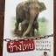 ช้างไทย ความจริงความหวังกับวันที่เหลืออยู่. รู้จักช้างจากมุมที่คุณไม่เคยมอง. จากประสบการณ์ : นายสัตวแพทย์สมชาย ศิริทรงกลด thumbnail 1