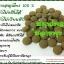 สมุนไพรลดน้ำหนัก ส้มป่อย เป็นสมุนไพรสกัดจากธรรมชาติ100% ( 100 เม็ด ) thumbnail 2