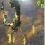 กล้วยไม้ สิงโตกลอกตาในประเทศไทย. ผู้เขียน สลิล สิทธิสัจธรรม thumbnail 10