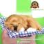 ตุ๊กตาหมานอนหลับ สีน้ำตาล [เบาะฟ้า] 13x17 CM thumbnail 2
