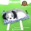 ตุ๊กตาหมานอนหลับ สีเทา [เบาะฟ้า] 13x17 CM thumbnail 1