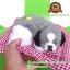 ตุ๊กตาหมานอนหลับ สีเทา [เบาะแดง] 19x24 CM thumbnail 5