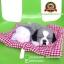 ตุ๊กตาหมานอนหลับ สีเทา [เบาะแดง] 19x24 CM thumbnail 1