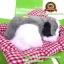 ตุ๊กตาหมานอนหลับ สีเทา [เบาะแดง] 19x24 CM thumbnail 3