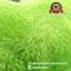 รองเท้าใส่นอน กรีนแมน Alien Comic Book [Disney Pixar] thumbnail 5