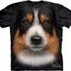 Big Face Australian Shepherd Dog T-Shirts