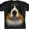 Big-Face Bernese Mountain Dog-T-Shirts