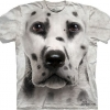 Big Face Dalmation Dog T-Shirts