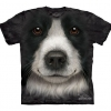 Big Face Border Collie Dog T-Shirts