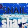 บำรุงผิวหน้าขั้นเทพ ด้วย Snail Shark Acne White Cream สเนล ชาร์ค แอคเน่ ไวท์ ครีม