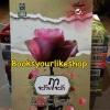 จะรักฤาจะร้าย / Amata สนพ.ดอกหญ้า หนังสือใหม่ S