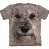 Miniature Schnauzer Face - Youth