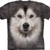 Big Face Alaskan Malamute Face T-Shirts