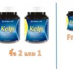 Kelp โปรโมชั่น ซื้อ2แถม 1