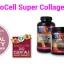 NeoCell Super Collagen+ C 250 เม็ด ขนาดบรรจุมากสุด ผลิตภัณฑ์เสริมอาหารคอลลาเจน พลัส ซี ขนาด 250 เม็ด แบบมี อย.ไทย ฉลากภาษาไทย สำเนา thumbnail 3