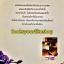 ทะเบียนรักเพลิงอสูร / มัสยามันตรา สนพ วีนัสพลัส หนังสือใหม่**มีตำหนิ***เฉพาะขอบปก เหลืองคะ *** thumbnail 2