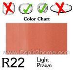 R22 - Light Prawn