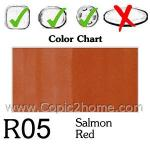 R05 - Salmon Red
