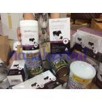Health Essence Colostrum Chewable Tablets รูปหมีโคอะล่า โดสเข้มข้น 4000 IgG ขนาด 820 มก. (แบบเม็ด 200 เม็ด)