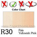R30 - Pale Yellowish Pin