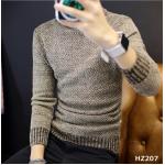 HZ207