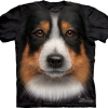 Big Face Australian Shepherd Dog T-Shirts