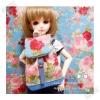 "HMLMshop123 : กระเป๋า สำหรับ ตุ๊กตา 16 "" (MSD,AMT,NANCY doll 16 "")"