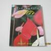 หนังสือคู่มือคนรักต้นไม้ หน้าวัว วชิรพงศ์ หวลบุตตา เขียน