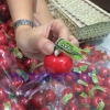 Lip balm app'mouth ลิปบาล์ม แอ๊บเม้าส์ SPF 15 PA
