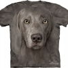 The Mountain Big Face weimaraner dog  T-Shirts
