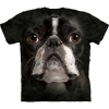 Big Face Boston Terrier Dog T-Shirts