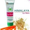 Himalaya Herbals Lip Balm : ลิปบาล์มหิมาลายา (10g) ลิปบาล์ม ช่วยแก้ปัญหา ปากแห้ง แตกเป็นขุย ขายดี เห็นผลตั้งแต่ครั้งแรกที่ใช้ ไม่ว่าจะด้วยกรรมพันธุ์ ยาหมอ หรือ ดื่มน้ำน้อย ด้วยส่วนผสม UV filter ที่ช่วยป้องกันริมฝีปากดำจากแสงแดด และ วิตามิน E บำรุงเรียวปาก