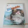 แมวเปอร์เซีย (Persian Cat) ชินาภา ประวัง เรียบเรียง***สินค้าหมด***