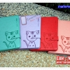 เคส iPad 2/3/4 - Domicat