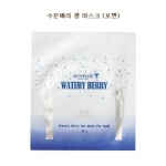 Skinfood Watery Berry Gel Mask For Men