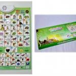 แผ่นเรียนรู้อักษรภาษาไทยแบบอิเล็กทรอนิกส์สำหรับเด็ก เป็นแผ่นเรียนรู้ 2 ภาษา มีชีวิต ก-ฮ และ A-Z สอนอ่านออกเสียง หาคำศัพท์ สะกดคำ มีเพลงไทย เพิ่มและลดระดับเสียงได้ (กล่องอาจะเป็นสีเขียว หรือ สีฟ้า ฟังกชั่นเหมือนกันค่ะ)