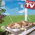 ที่นอนแมวติดกระจก