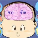 การพัฒนาสมองของเด็กปฐมวัย (3-6ขวบ) ตามแนวทาง BBL