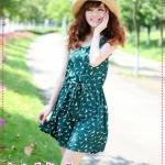 เดรสแฟชั่นแขนกุดสกรีนลายสีเขียว 2012 summer and the new Korean version of sweet ladies the Drawstring vest dress Slim Dress
