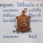 สินค้าหมดค่ะ เหรียญเต่าสบายใจ หลวงปู่หลิว วัดไร่แตงทอง เนื้อทองแดง ปี2539 พร้อมคาถาบูชาค่ะ