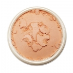 Skinfood Sugar Cookie Blusher #2 Bebe Peach